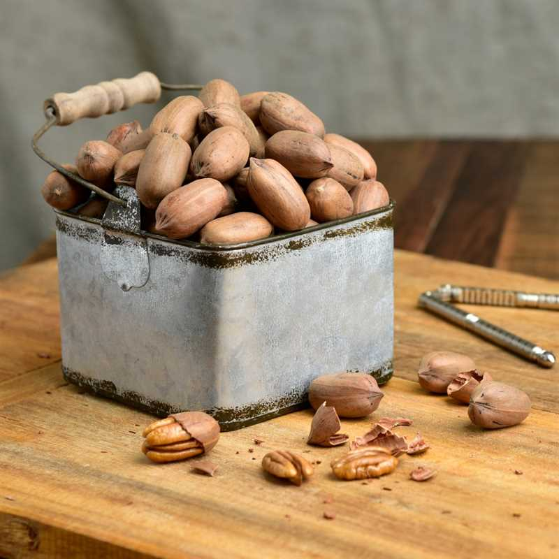 In-Shell Pecans For Sale Online