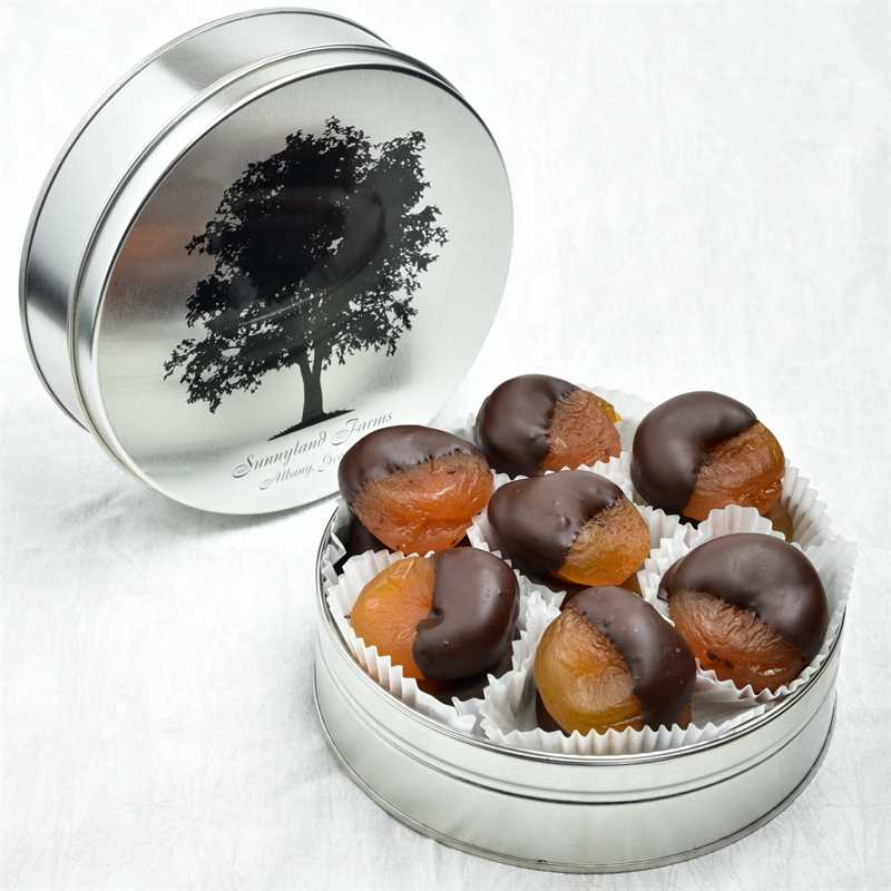 Dark Chocolate Dipped Apricots