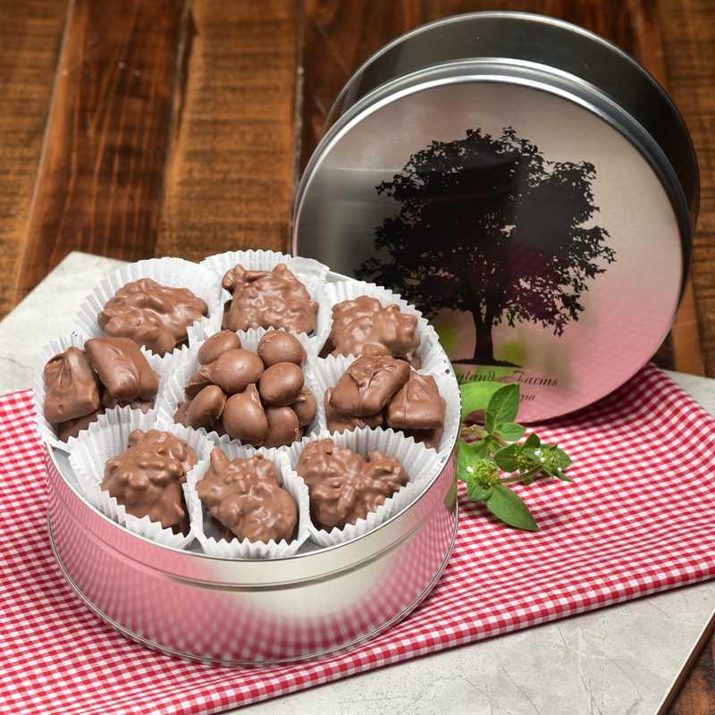 Chocolate Carousel Detailed