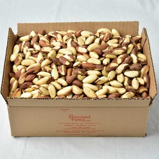 fresh brazil nuts for sale