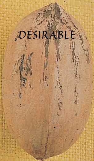 Desirable-silo_(1).jpg